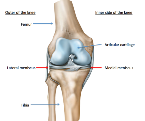 Pain in the knee ccuart Images